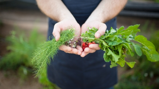 Man holds vegetables in both hands for photograph at Miraval.