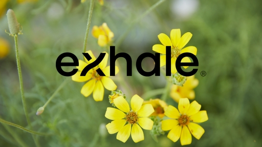 Logo and cover for Exhale Austin at Miraval.